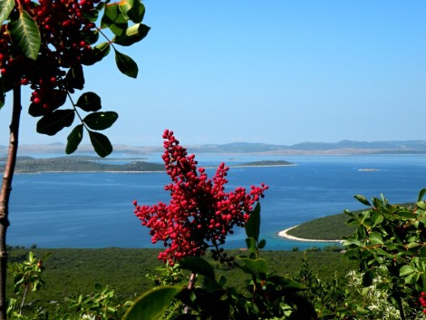 Ostrov Pašman a pohled na pevninu a ostatní ostrovy.